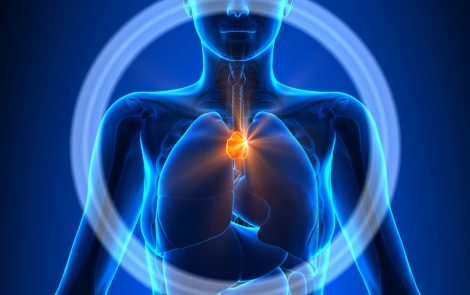 Low Levels of RNA Molecules in Thymus May Contribute to MG Development